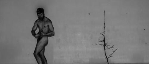 Soirées singulières, trois solos, trois performances aussi radicalement différentes les unes des autres que complémentaires. Trois éclats bruts, reflets d'une interrogation fébrile sur l'identité masculine, le masculin dans tous ses états, une mise à nu au sens propre et au sens figuré. C'est une mise à plat de la fabrique du masculin, une redéfinition du genre qui à travers la performance pose des questions sans y vouloir répondre, célèbre le mystère des origines, explore la sexualité et par elle le trouble du corps exposé, s'invente une biographie, autofiction aux multiples identités comme autant de vérités possibles d'une personnalité unique et multiple.