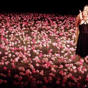 « Nelken » une pièce de Pina Bausch, au théâtre du Châtelet (en partenariat avec le Théâtre de la Ville)