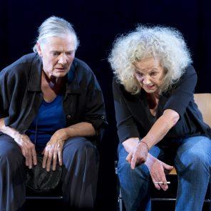 La Nostalgie des blattes, texte et mise en scène de Pierre Notte, Théâtre du Rond-Point