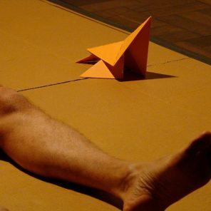 La Bête, performance de Wagner Schwartz, au CND / Festival Camping