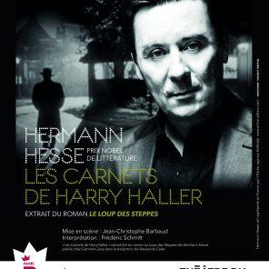 Les Carnets de Harry Haller, extrait du Loup des Steppes écrit par Hermann Hesse, mise en scène de Jean-Christophe Barbaud, au Théâtre du Roi René