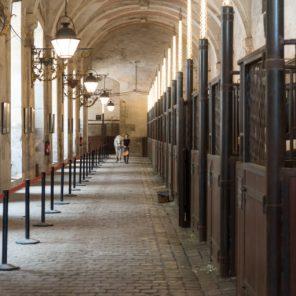 Académie équestre de Versailles,